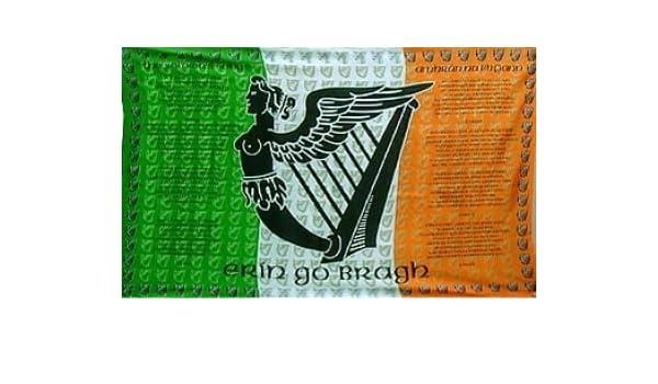 Fahne Irland Athenry Hissflagge 90 x 150 cm Flagge