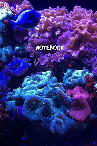 Notebook: Coral Reef Blank lined journal -