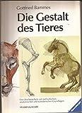 Die Gestalt des Tieres, Studienausg.