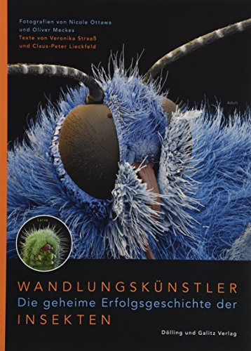 Wandlungskünstler. Die geheime Erfolgsgeschichte der Insekten.