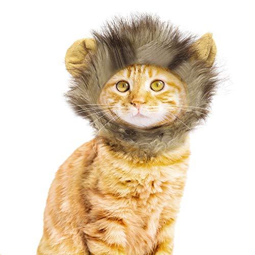 Vavopaw Katze Perücke, Flauschige Mähne Perücke Waschbar Bequemes Kleid Kleidung Cosplay Halloween Party Festival Kostüm für Kleine Hundekatze - Löwe (Lion Halloween-kostüm Cute)