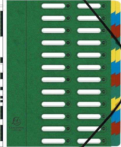 Exacompta 55243E Ordnungsmappe aus Manila Karton 425 g, mit Gummizug und Dehnbarem Harmonika-rücken, 24 fächer mit Ausgestanzten Fenstern Nature Future, Din A4, grün