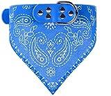 Kathy Lee's SHOP Einstellbare Hundehalsband mit Tuch für Hunde und Katze (S, blue)