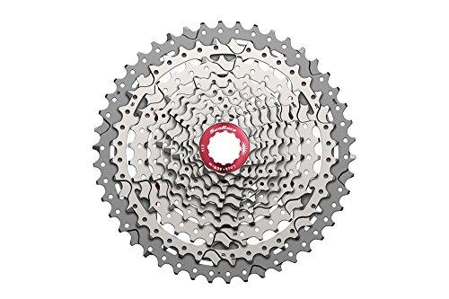 Sunrace CSMX3 Cassette para Bicicleta, 10 velocidades, Gris, Talla Única