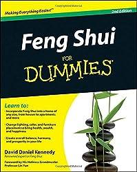 Feng Shui For Dummies by David Daniel Kennedy (2010-12-03)