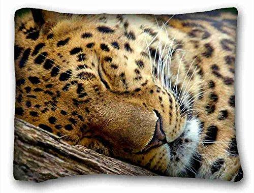 Bio-leopard (Generic Personalisierte (Tiere Leopard) Soft Kopfkissen Schutzhülle 50,8x 66cm (One Seiten) Reißverschluss Kissenbezüge geeignet für full-bed, Polyester-Mischgewebe, Muster 7, European)