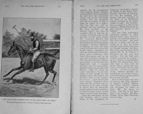 Sport 1917 del Cavallo del Babza di Ali del Cavallino di Polo di Signore Harrington