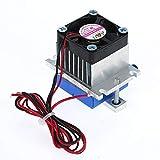 Docooler Electronic Semiconductor Thermoelectric Cooler Peltier Refrigeration Cooler Fan System DIY Kit 12V