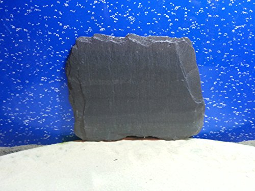 fennstones-real-natural-flat-slate-stone-rock-piece-for-vivarium-tortoise-beak-lizard-claw-trim