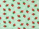 Fleecestoff Antipilling, Lovely Strawberry, hellgrün