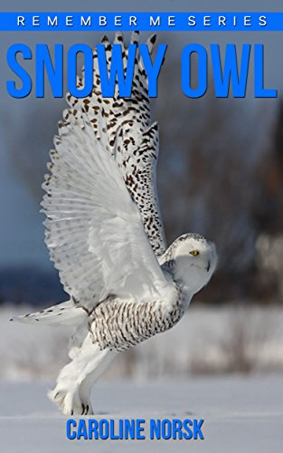 Snowy Owl: Amazing Photos & Fun Facts Book About Snowy Owls For Kids (Remember Me Series) (English Edition)
