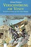 Verschwörung am Vesuv: Ein Kriminalroman aus dem alten Pompeji - Michael Pfrommer