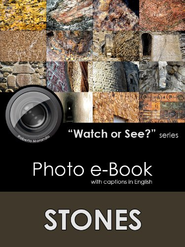 STONES (Watch or See? Book 2)