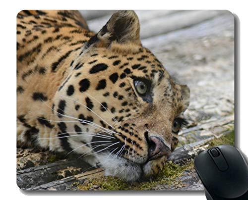 Yanteng Anti-Rutsch-Mäusematte für Desktops, Leopard-Tierzoo-Wild angepasst Mauspad
