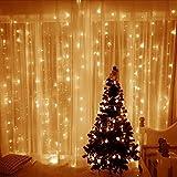 JUNMAONO 1 Satz LED Vorhanglicht Gypsophila Laterne Zeichenfolge blinkt Hochzeit Zimmer Bar Weihnachtsdekoration Lichter Weihnachtstag Laterne Lichterkette Schnurlicht,Weiß,Plug-in-Stil (3m*3m)