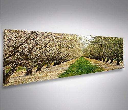 quadro-moderno-fioritura-primavera-alberi-mandorli-panorama-stampa-su-tela-quadro-x-poltrone-salotto