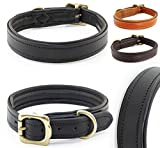 Pear - Tannery Classic-Line Hundehalsband aus weichem Vollrindleder, L 46-56 cm, schwarz
