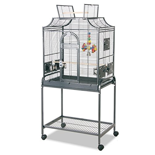 Wangado gabbia per uccellini voliera di ottima ed elegante fattura, con numerosi dettagli di qualità e completa di accessori. dimensioni: l 71 x p 45 x h 139 cm.