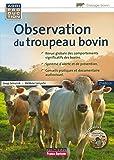 Image de Observation du troupeau bovin