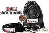 Hundeleine – Premium Multifunktionsleine – 4-fach längenverstellbar – 2m lang - 2