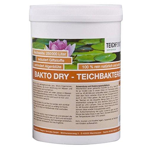 Teichpoint 500 g Bakto Dry Teich - Billionen von Mikro-Organismen -