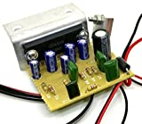 #9: TECH AND TRADE 30W DIY Mono Audio Amplifier 4440 IC Circuit Kit