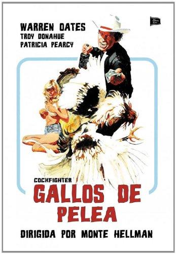 gallos-de-pelea-edizione-spagna