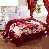 Wddwarmhome Couverture chaude d'hiver Couverture rouge Couverture de lit de chambre Motif Floral de bureau Couverture de sieste de bureau Couverture de Raschel Doux et confortable Taille: 200 * 230cm Couvertures
