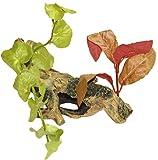 WAVE Beauty Plante sur Branche 2 Objet d'Ornement pour Aquariophilie Taille S