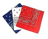 QBSM 6 Stk Paisley Bandana Bindetuch Halstuch damen und herren 55 x 55 cm 100% Baumwolle(blau&Weiß&rot)