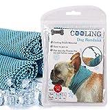 DOGO - Collare Termico per Cane, Traspirante, Fazzoletto rinfrescante