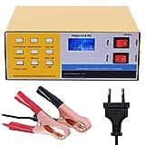 GreenRibbon 12V/24V Chargeur de Batterie Intelligent Automatique Pulse Réparation Mainteneur 10A pour Voitures Motos Batterie au Plomb Acide AC220V