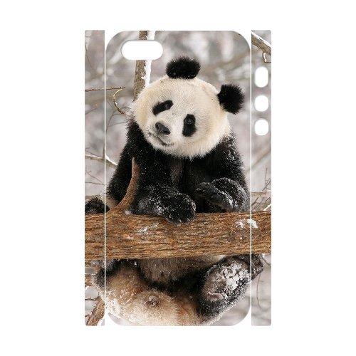 vncase Panda Coque pour iPhone 5/5S [pattern-5]