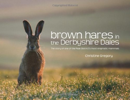 Brown Hares in the Derbyshire Dales: The Story of One of the Peak District's Most Enigmatic Mammals