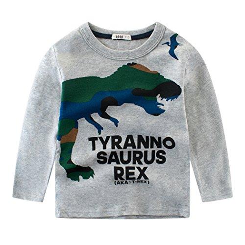 Tkria Kinder Jungen Grau Dinosaurier Baumwolle Langarm Shirts Pullover T-Shirt Top 2 - 9 Jahren (Dinosaurier-jungen-t-shirt)