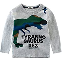 Tkria Little Boys Jumpers Kids Dinosaur Sweaters Sweatshirt Pullover Shirts Casual Tops Cotton Tee Age 1 2 3 4 5 6 7 8 9