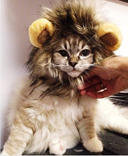 (Zahara.e Haustier Hund Katze Kostüm Löwenmähne Perücke Weihnachten Halloween Festival Bekleidung)