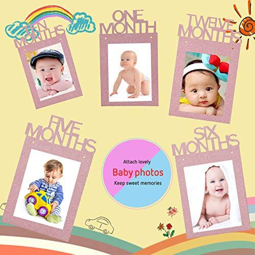 Zyh Zyh 1st Birthday Bunting Banner Baby Growth Record Bunting