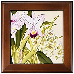 3dRose Light Pink Cattleya Orchids and Light Yellow Oncidium Orchid - Framed Tile, 6 by 6-inch