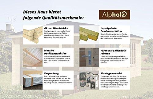 alpholz-geraetehaus-enrico-aus-holz-216-x-216cm-gartenhaus-mit-boden-aus-massivholz-geraeteschuppen-aus-holz-mit-echtglas-verglasung-2
