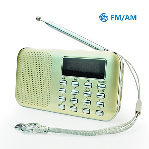 PRUNUS L-218AM-GOLD FM AM Radio mit Micro TF Card USB MP3, Gold