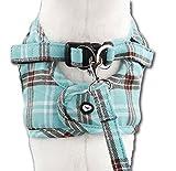 Komfortables Hundegeschirr Scottish Türkis XXS-M, Größe:XS - 3