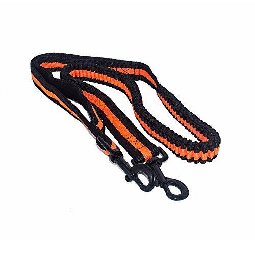 TEQIN Honor Regolabile Piombo Cablaggio Della Cinghia per Animali Cani Animali Trazione Corda di Nylon Guinzaglio (Arancia)