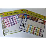 2 x Childrens Magnetic Reward Chart Magnetic Stickers Pen with eraser Girl & Boy