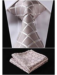 HISDERN Herren Krawatte Taschentuch Check Krawatte & Einstecktuch Set Beige & Wei?