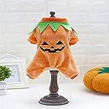 Finoki vêtements pour chien , dog clothes halloween pour Costumes d'Halloween (S)