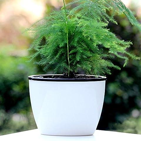 Mkono 3pcs d' irrigazione irrigazione automatico Vaso Office Home Decor Vasi di fiori, vasi in plastica PP ovale bianco S, White, s