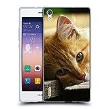 Just Phone Cases Schutz Hülle TPU Case Schutzhülle Silikon Tasche Dünn Transparent // V00004287 Katze liegend auf Holzbrettern // Huawei Ascend P7
