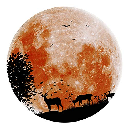Dark Leuchtaufkleber Leuchtsticker Nachtleuchtend Wasserdicht - Orange ()