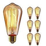 TINS E27 40W Vintage Edison Lampadina Stile Vintage Lampadina Gabbia Scoiattolo Lampadina Retro Lampadina Lampada Antica Dimmerabile DIY per Portalampada e Lampadina,Confezione da 6